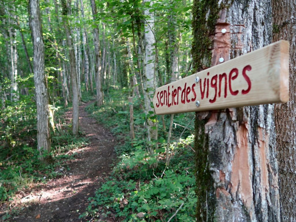 Sentier des vignes vers la Passerelle