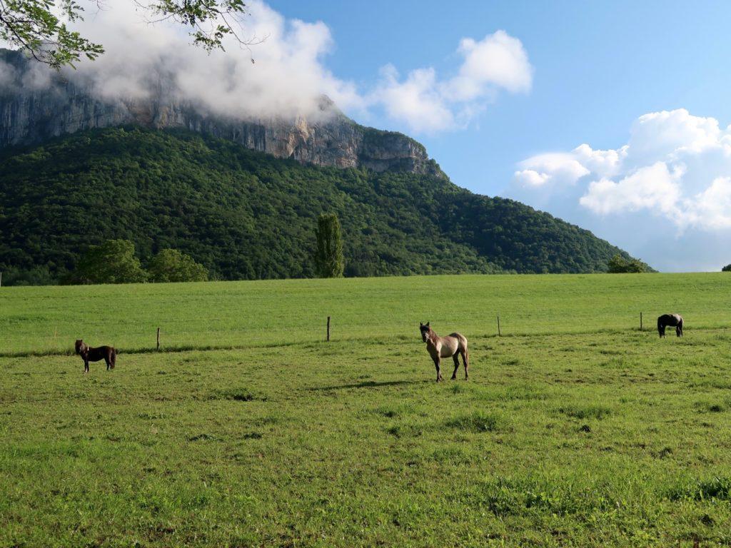 prairie du Mont Peney