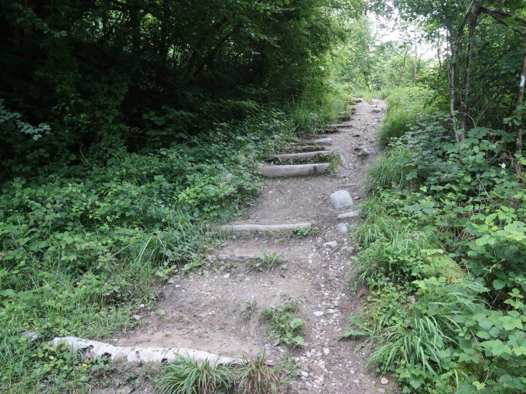 sentier accès