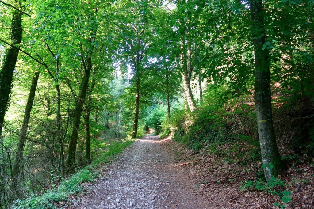 sentier roc du Cornillon