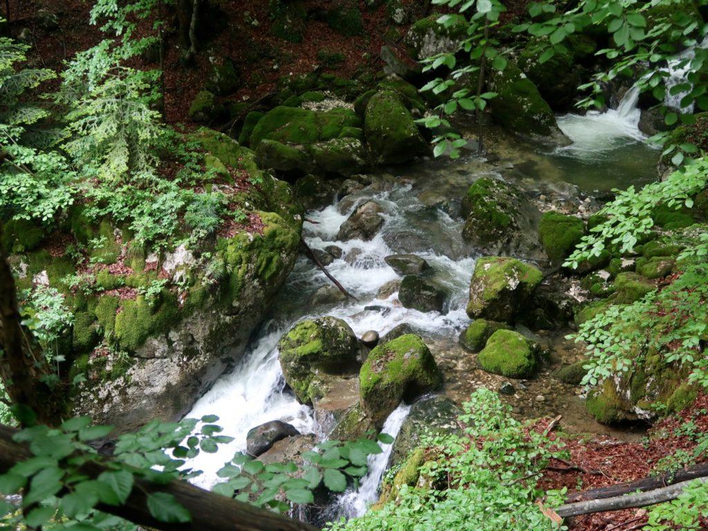 accès cascade de la Doria haute
