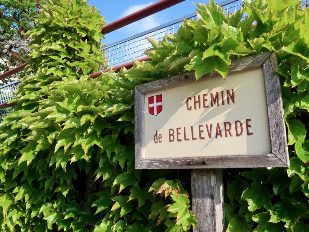 sentiers menant au Mont St Michel