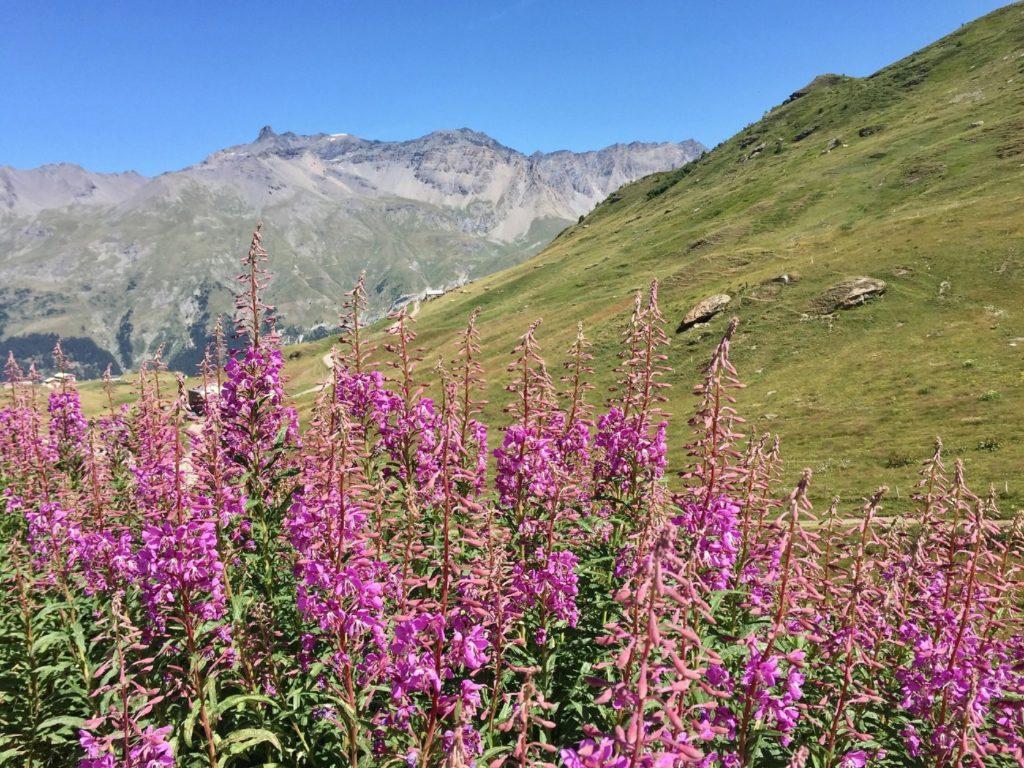 Trail Cenis Tour