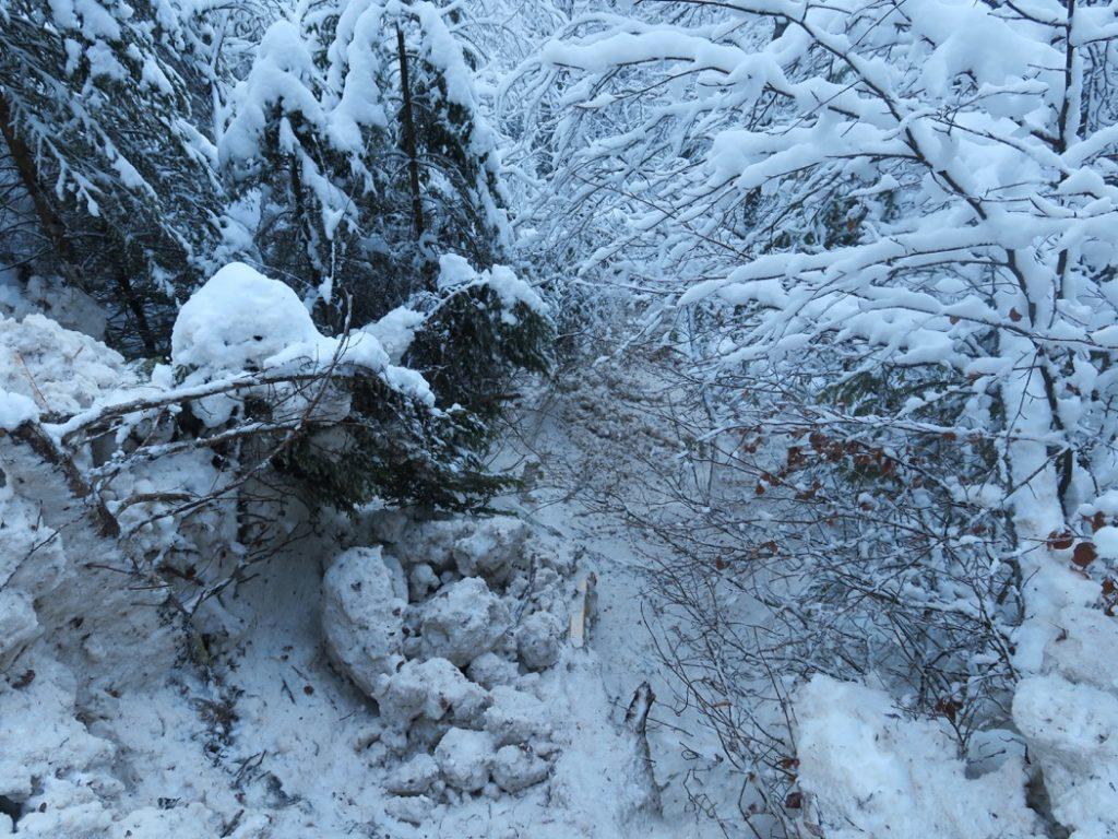 couloir d'avalanche