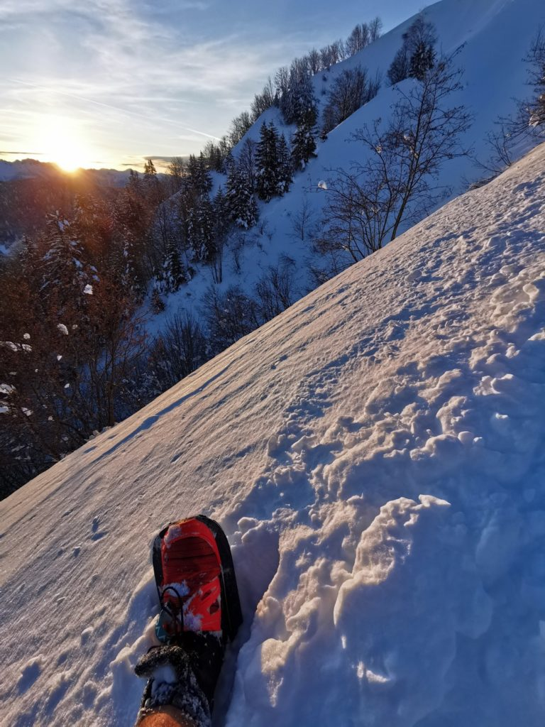 utilisation EVVO Snowshoes