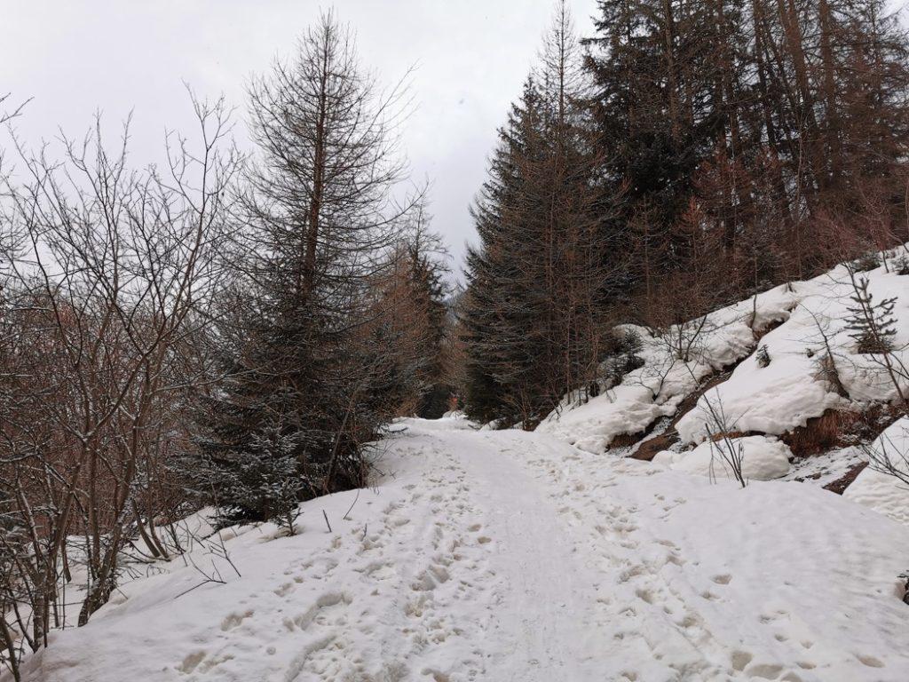 Chemin du Petit Bonheur