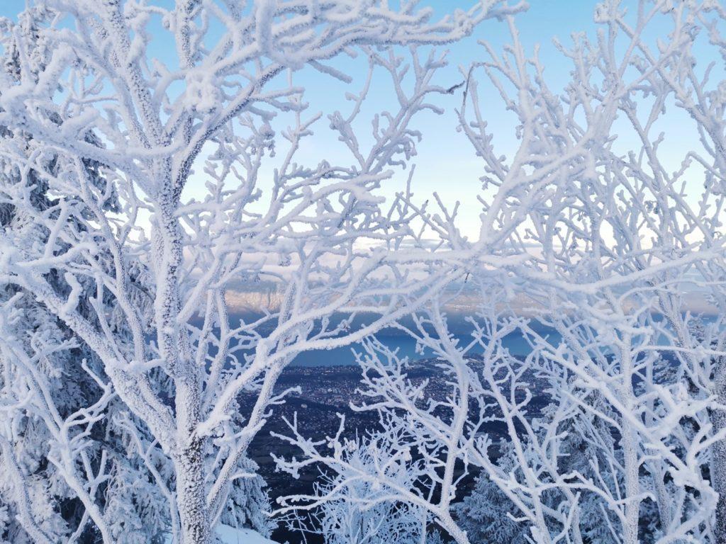 lendemain de neige