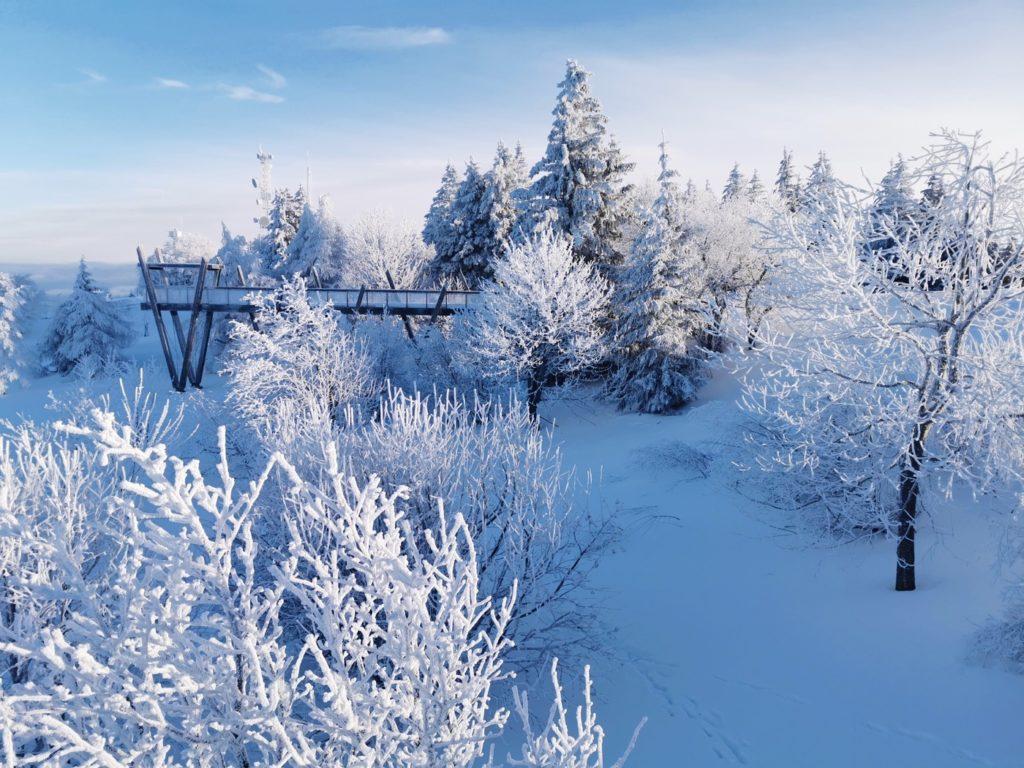 Le Revard un lendemain de neige