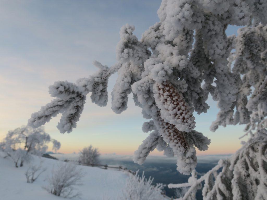 Le Revard en hiver