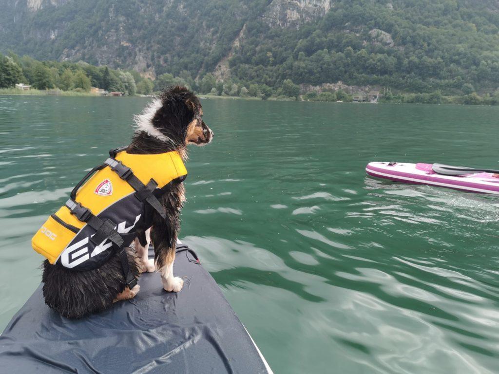 gilet de sauvetage pour paddle